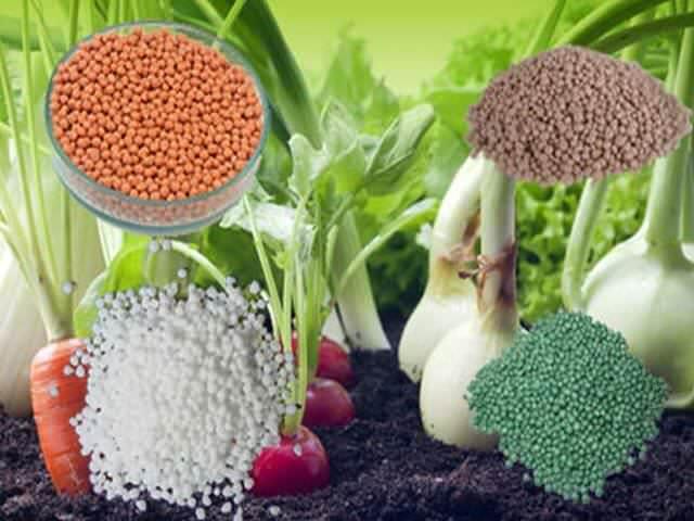 Potassium fertilizers