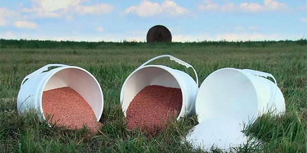 Оптимизация применения калийных удобрений